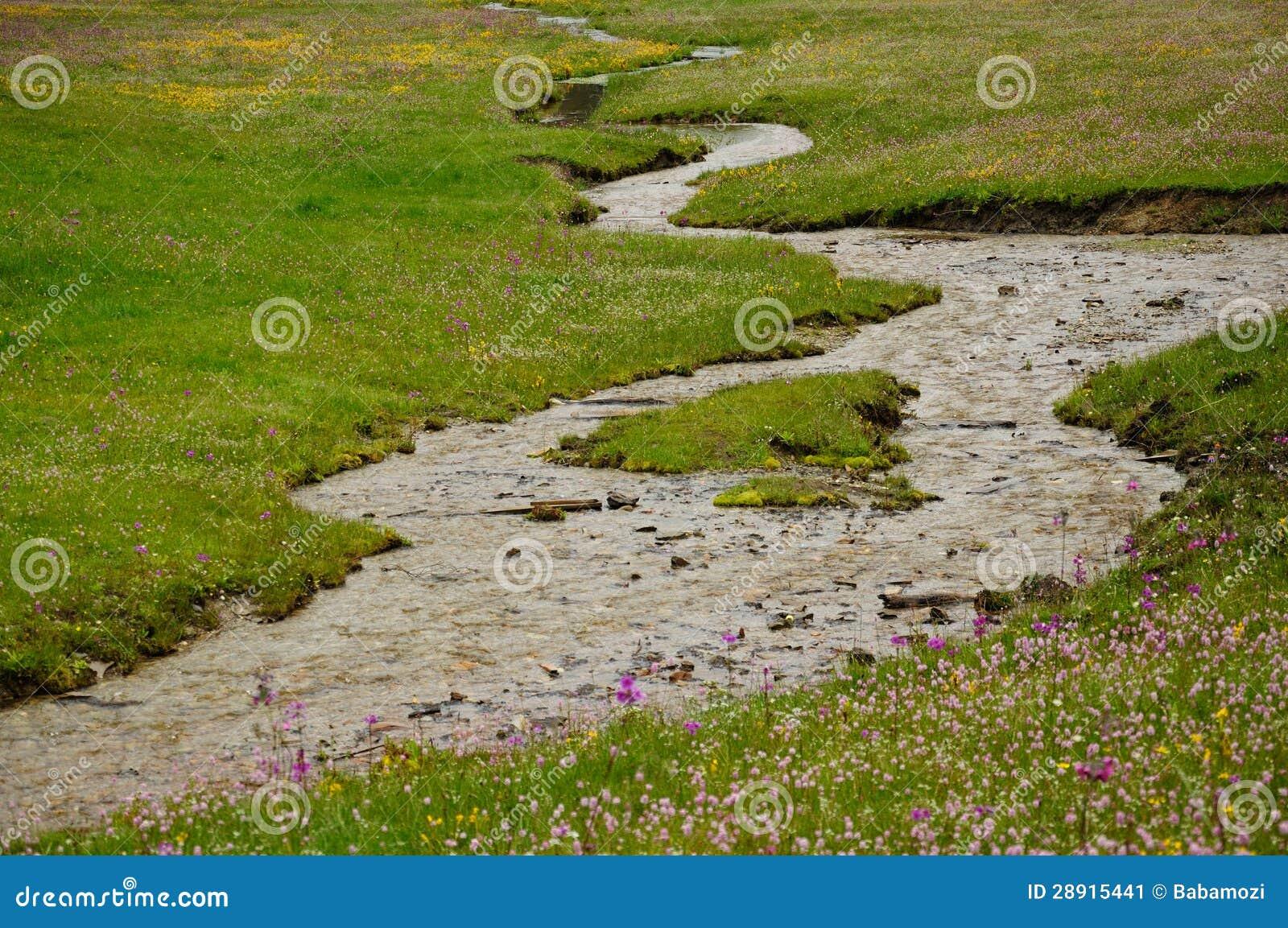 Очистьте поток в ферме травы в ШАНГРИ-ЛА