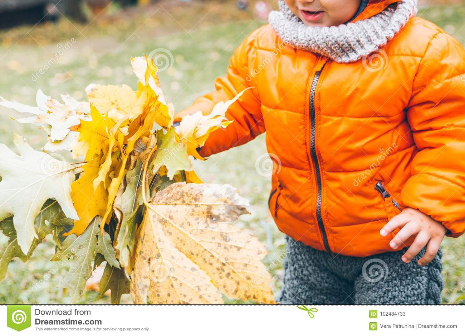 Оягнитесь в листьях желтого цвета владением в его руках
