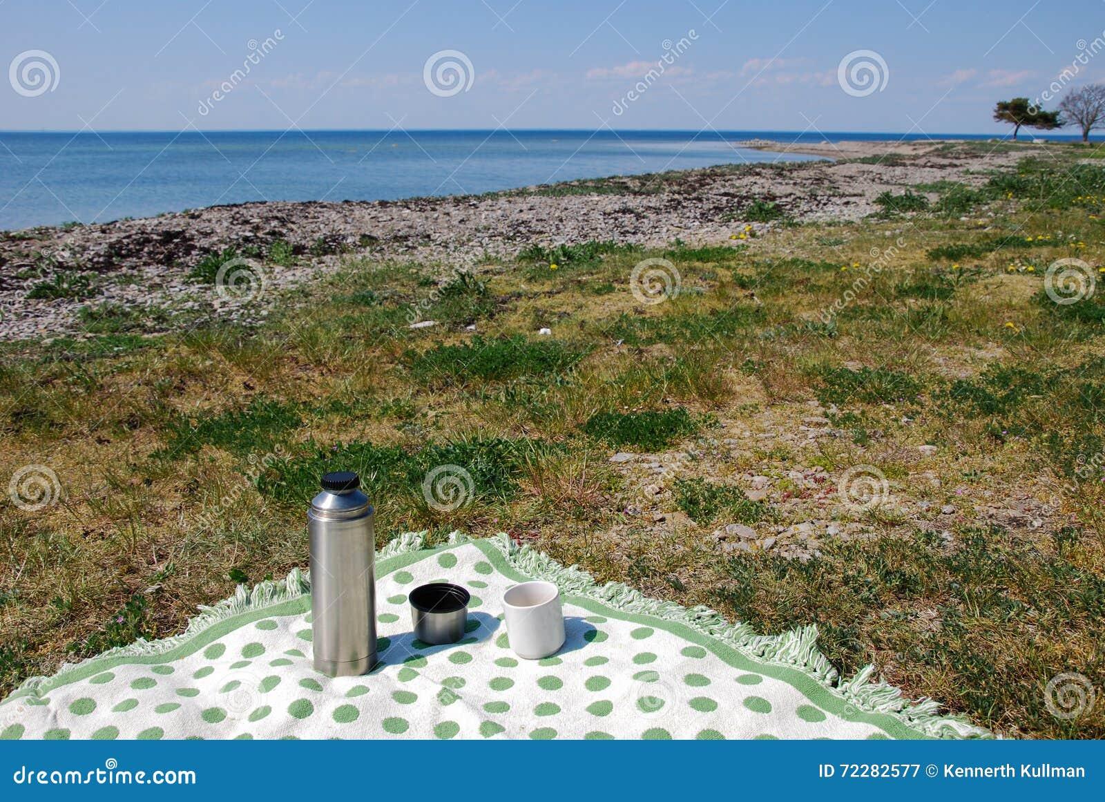 Download Одеяло с thermos на пляже стоковое изображение. изображение насчитывающей sunlight - 72282577