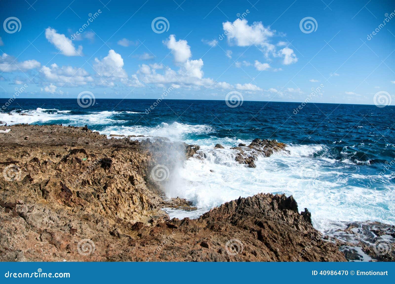 Одичалая береговая линия Аруба в Вест-Инди
