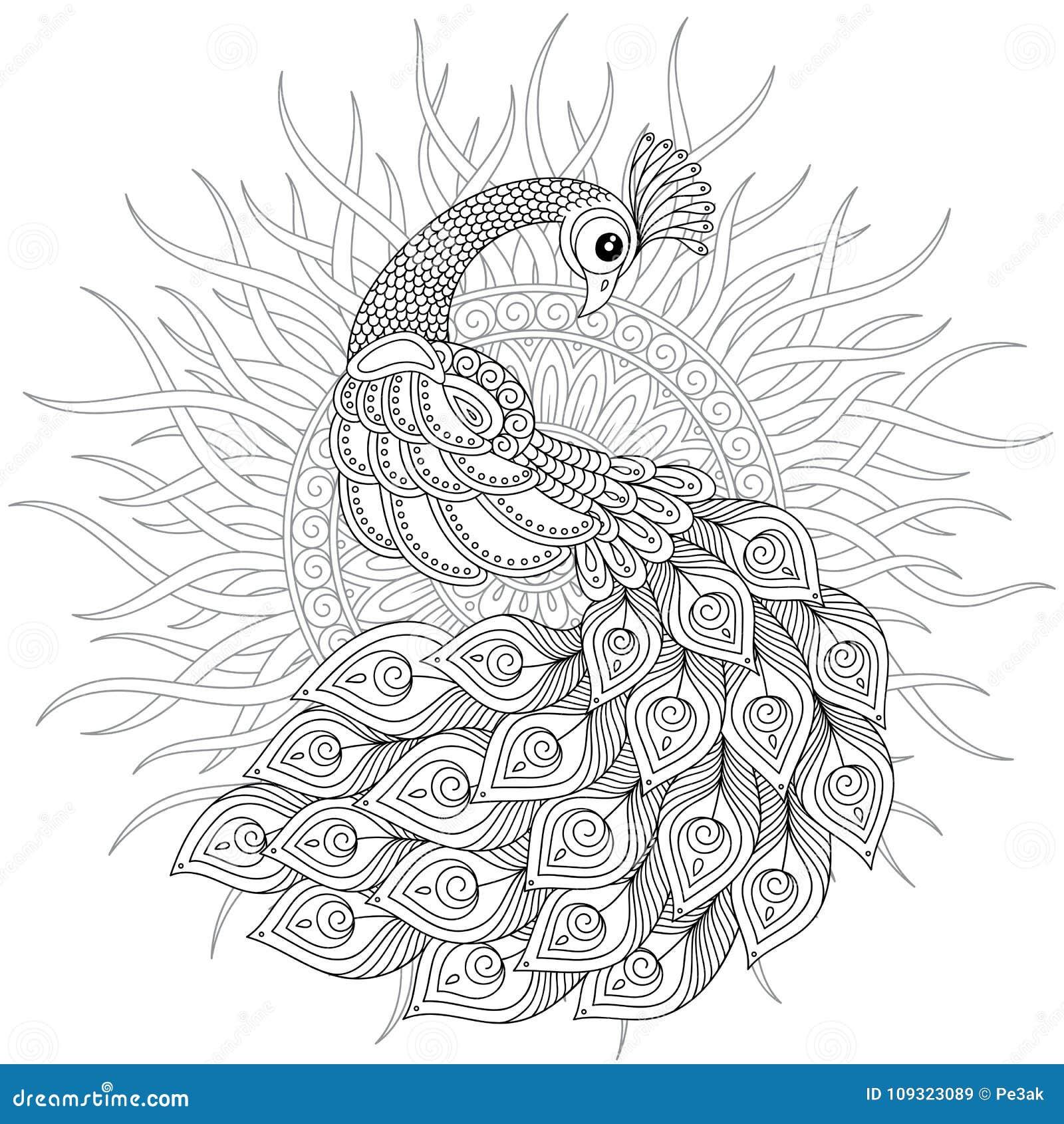 Pavlin V Stile Zentangle Vzroslaya Antistress Stranica Rascvetki Illyustraciya Shtoka Illyustracii Naschityvayushej Vzroslaya Stranica 109323089