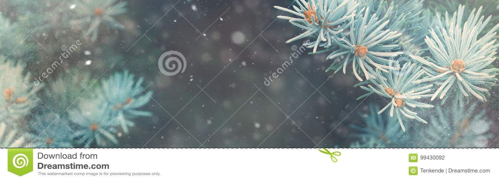 Падение снега в знамя волшебства природы рождества леса зимы