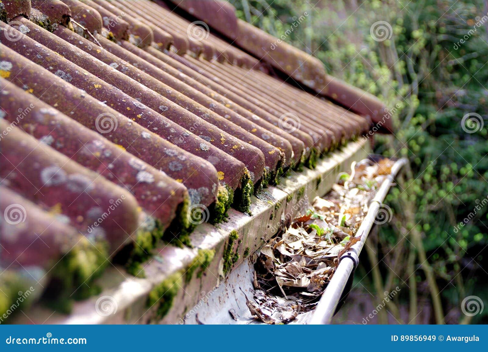 Пакостная крыша и сточная канава требуя чистки