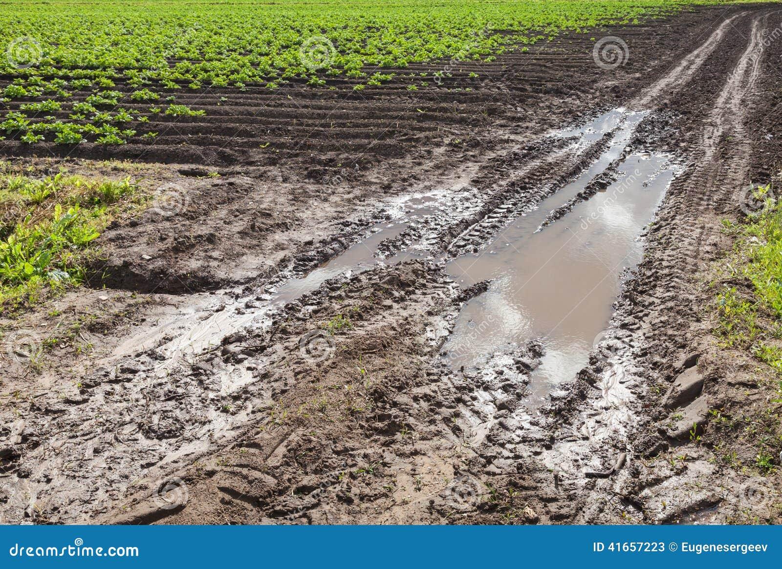 Пакостная дорога с грязями в поле