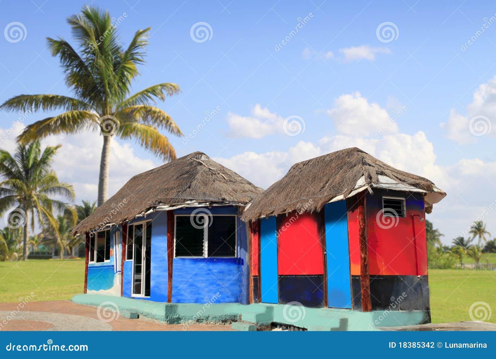 пальмы palapa хаты кабины цветастые тропические