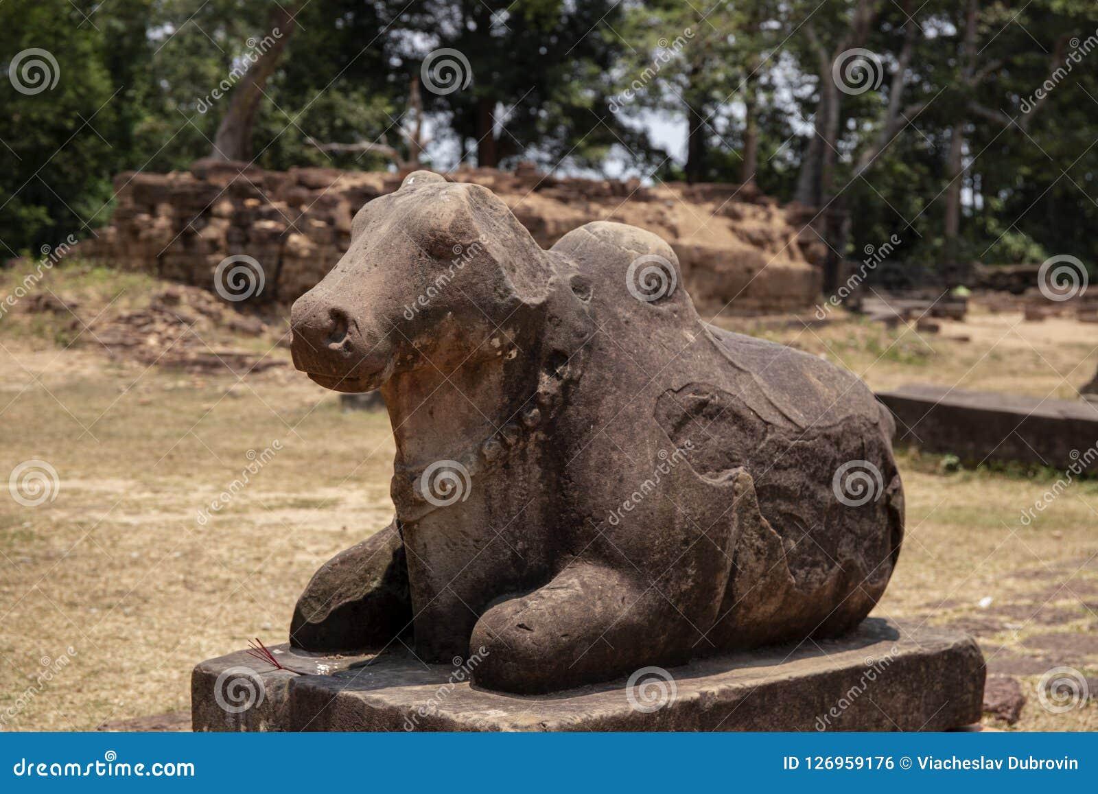 Памятник камня древнего храма в комплексе Angkor Wat, Камбодже Корова Nandi или статуя быка Скульптура индусского виска