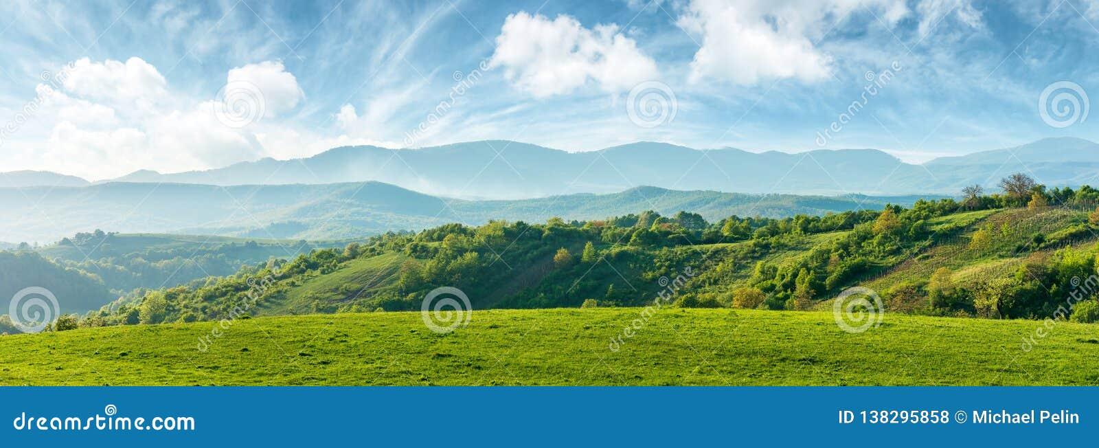 Панорама красивой сельской местности Румынии