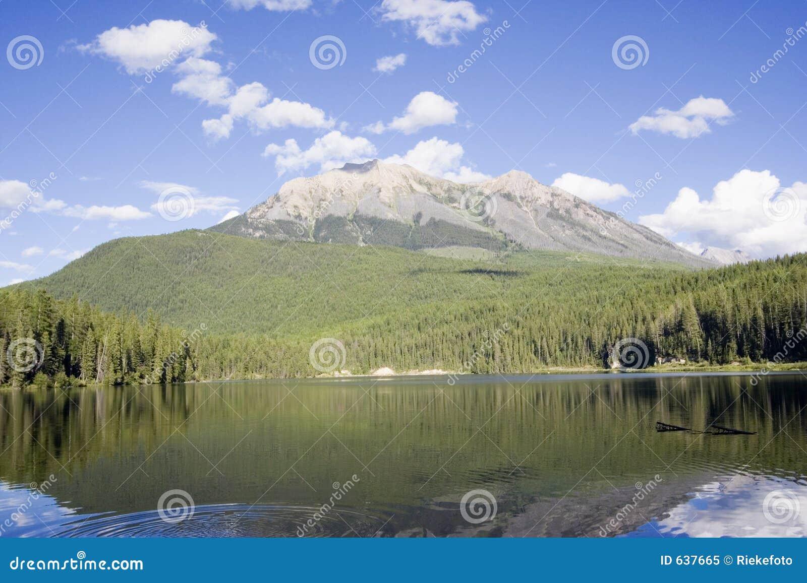 Download панорама озера Alces прелестно Стоковое Изображение - изображение насчитывающей сосенка, пик: 637665