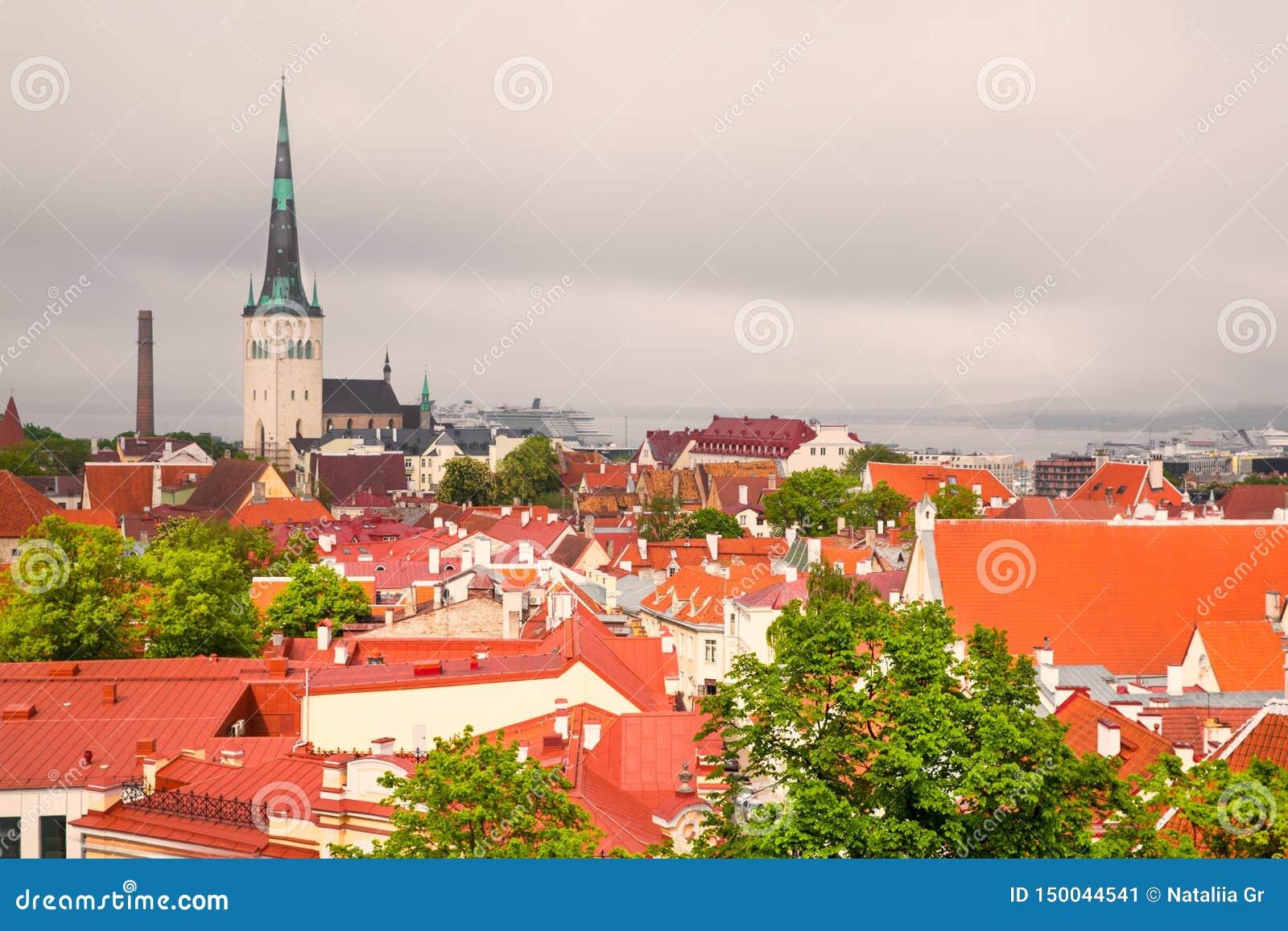 Панорама Таллина, Эстонии Яркие крыши и темное небо
