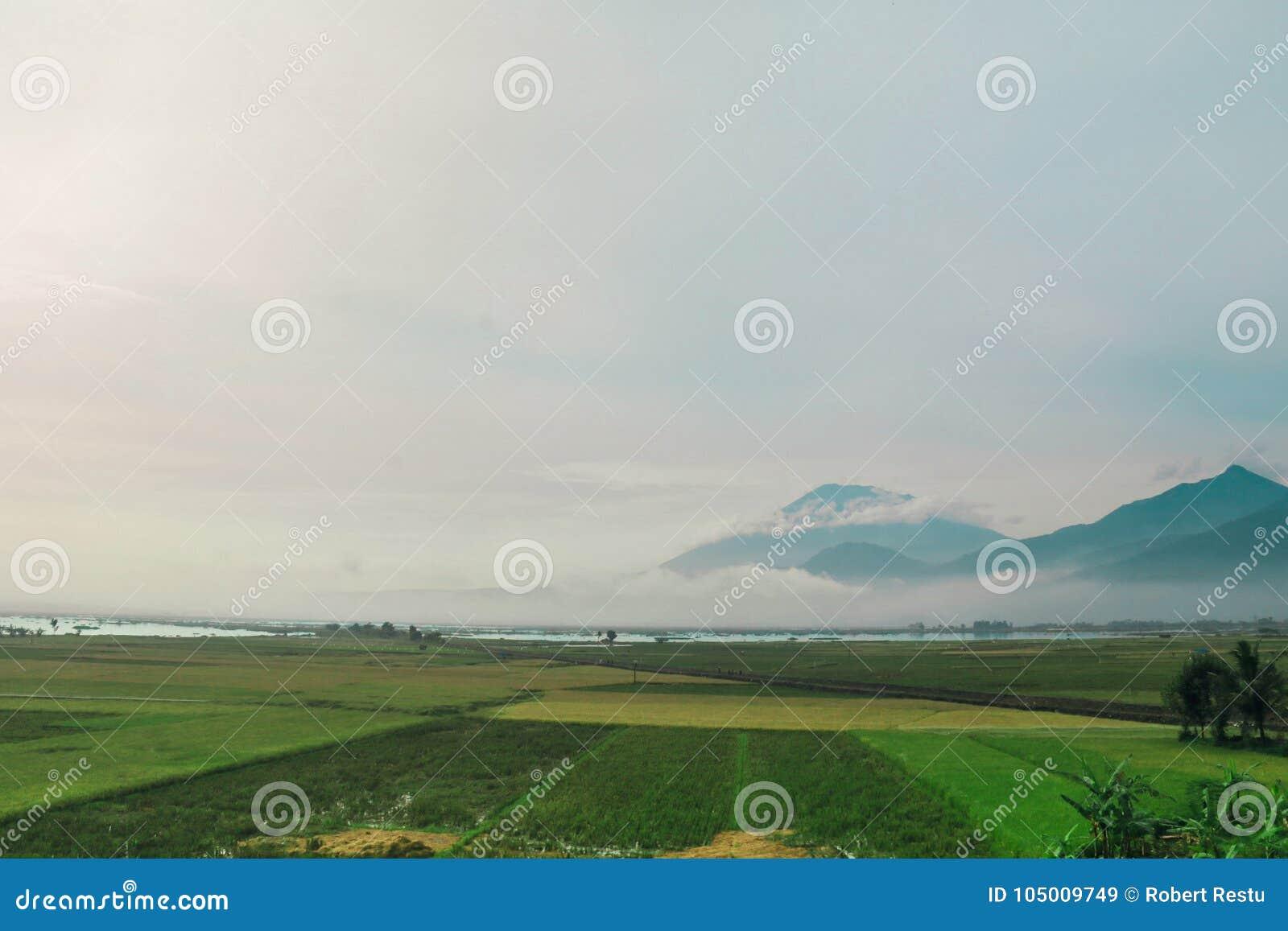 Панорама Rawa пиша Ambarawa Индонезию