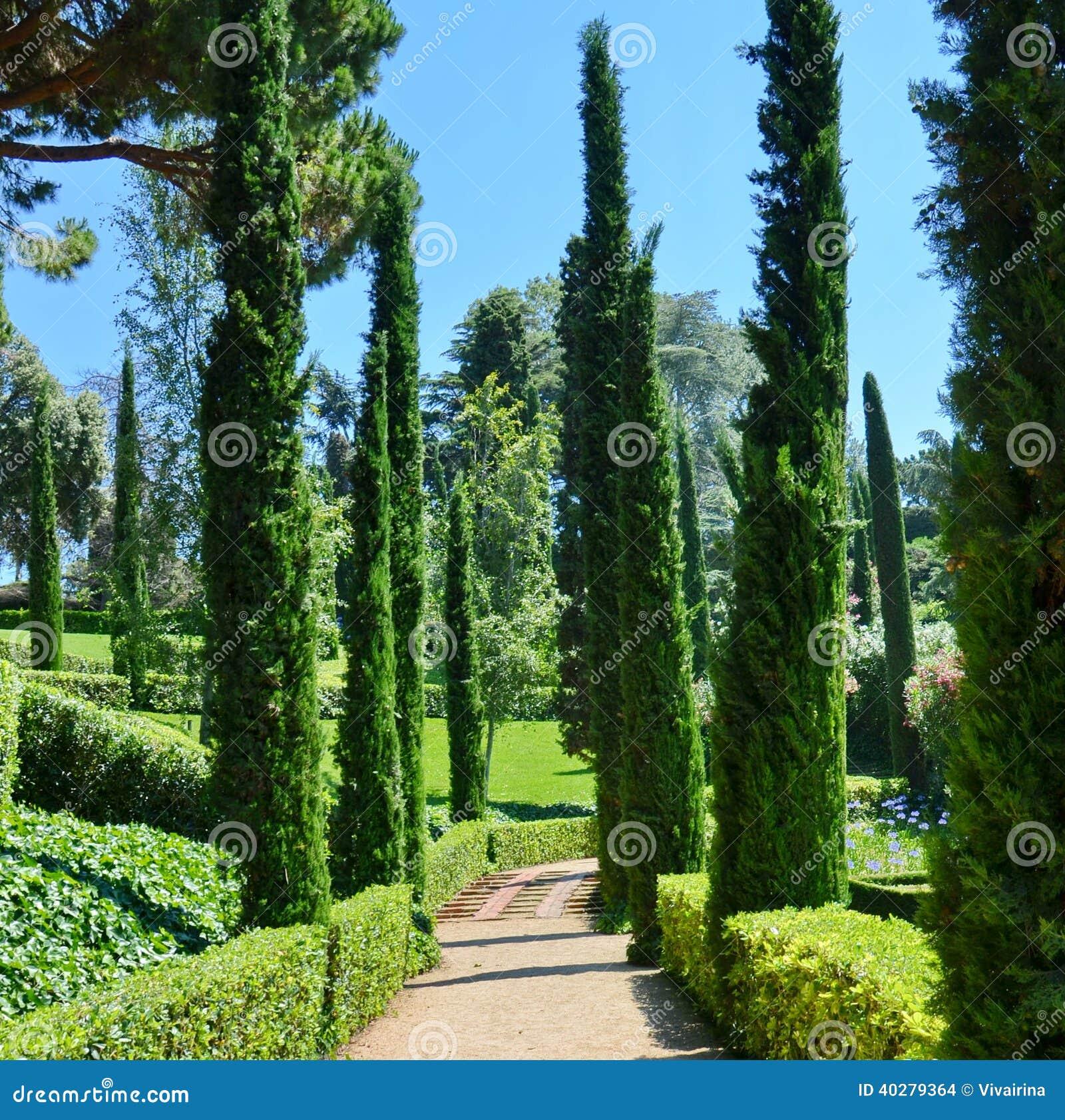 Панорамная концепция летних каникулов взгляда сада и парка