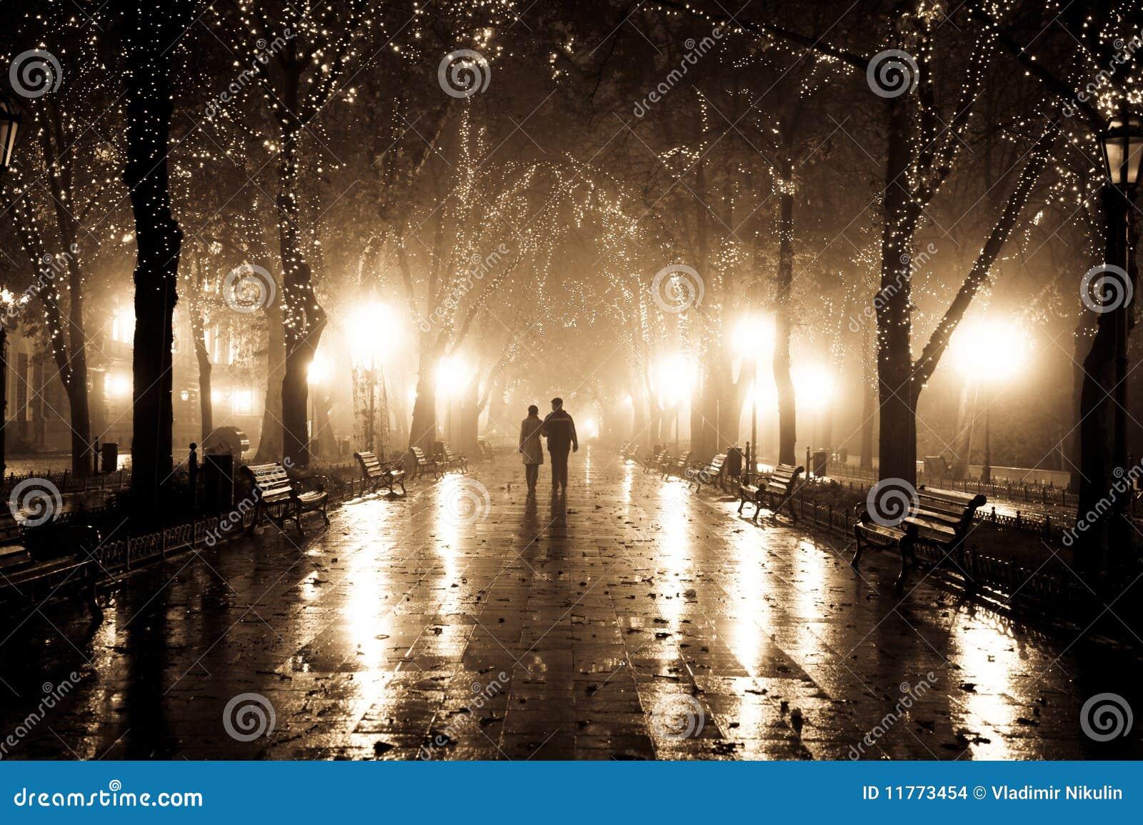 пара переулка освещает гулять ночи