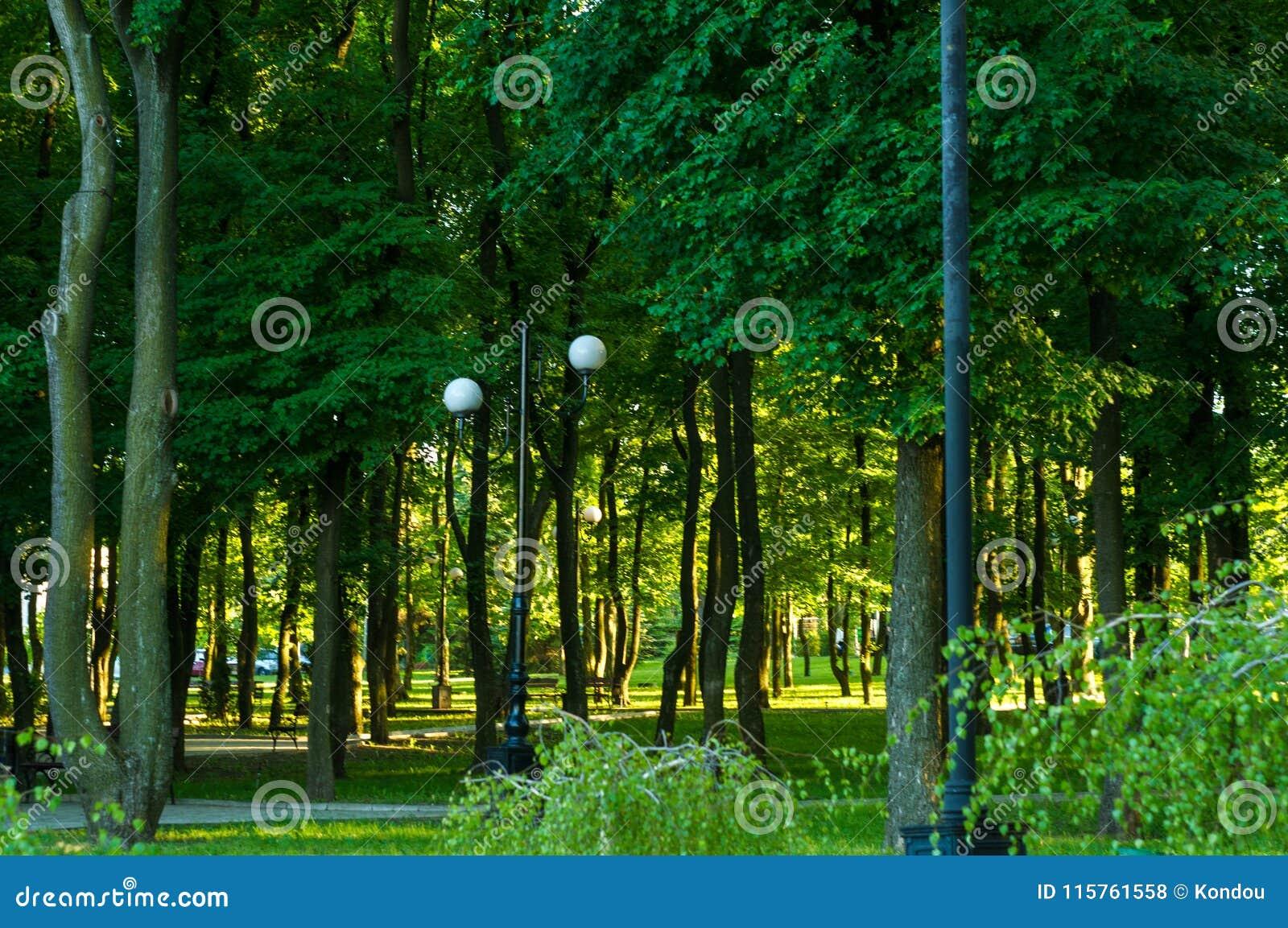 Парк города весны