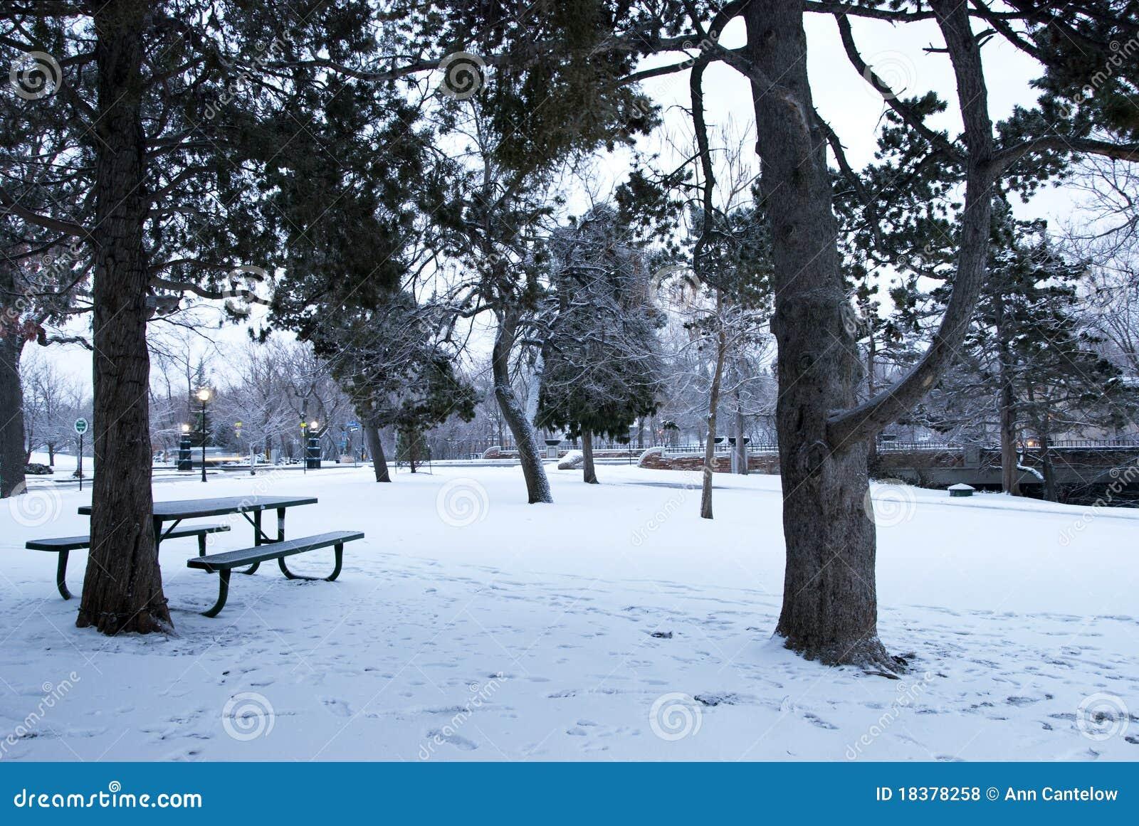парк города снежный