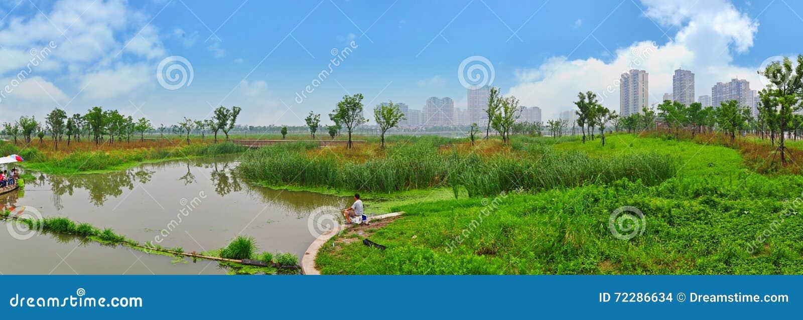 Download Парк заболоченного места редакционное стоковое изображение. изображение насчитывающей бело - 72286634