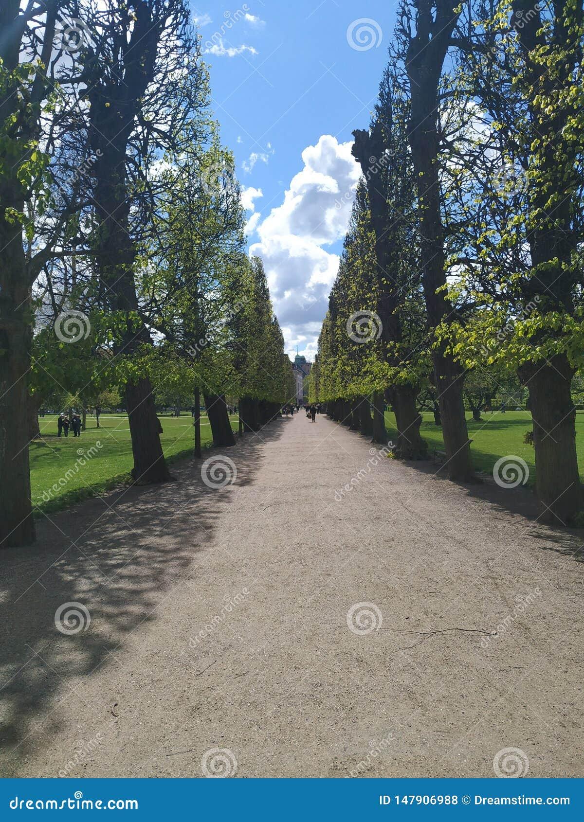 Парк Копенгагена