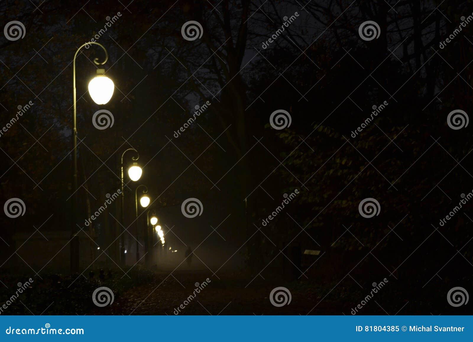 Парк на ноче с сияющими уличными фонарями