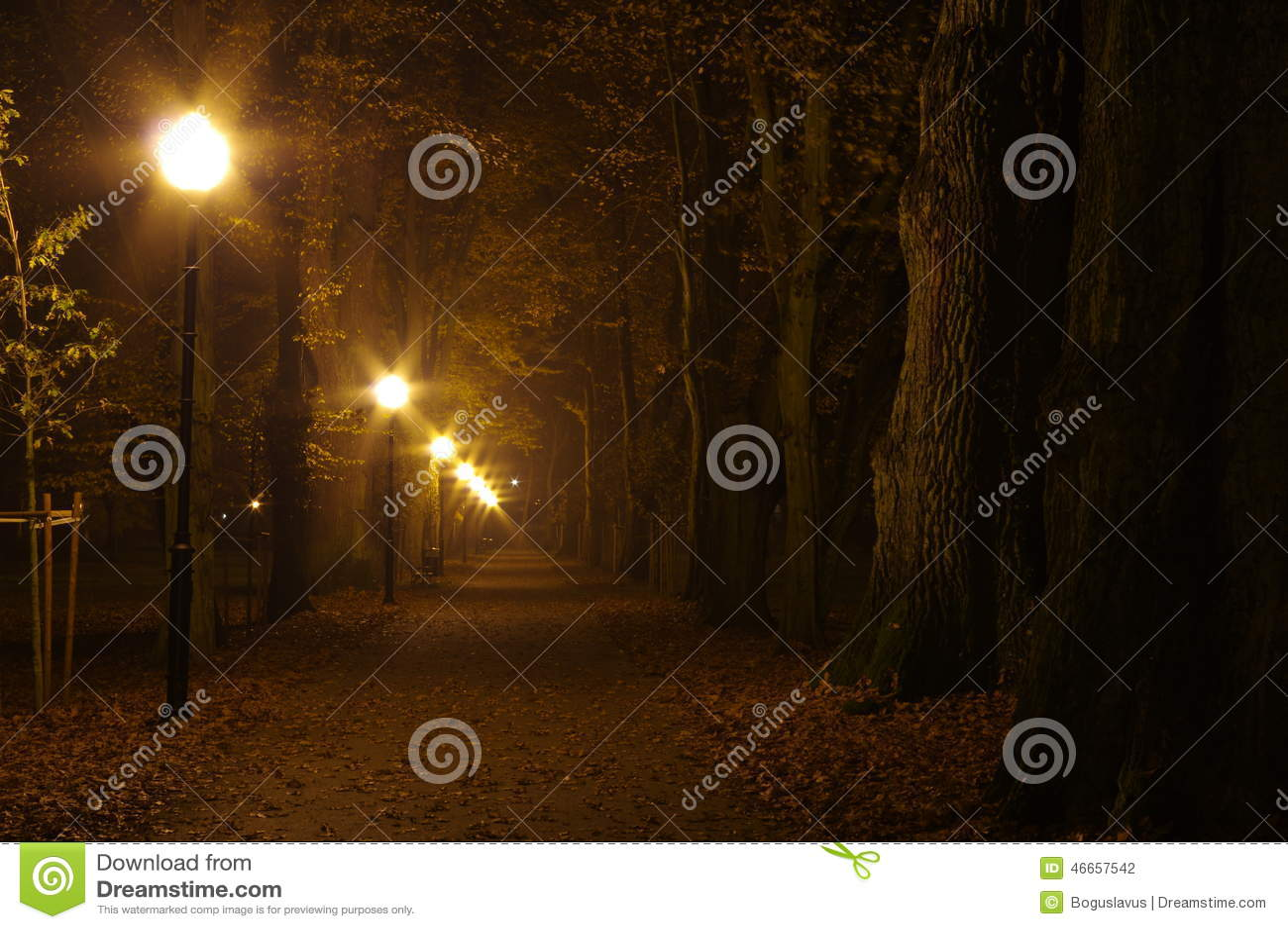 Парк на ноче
