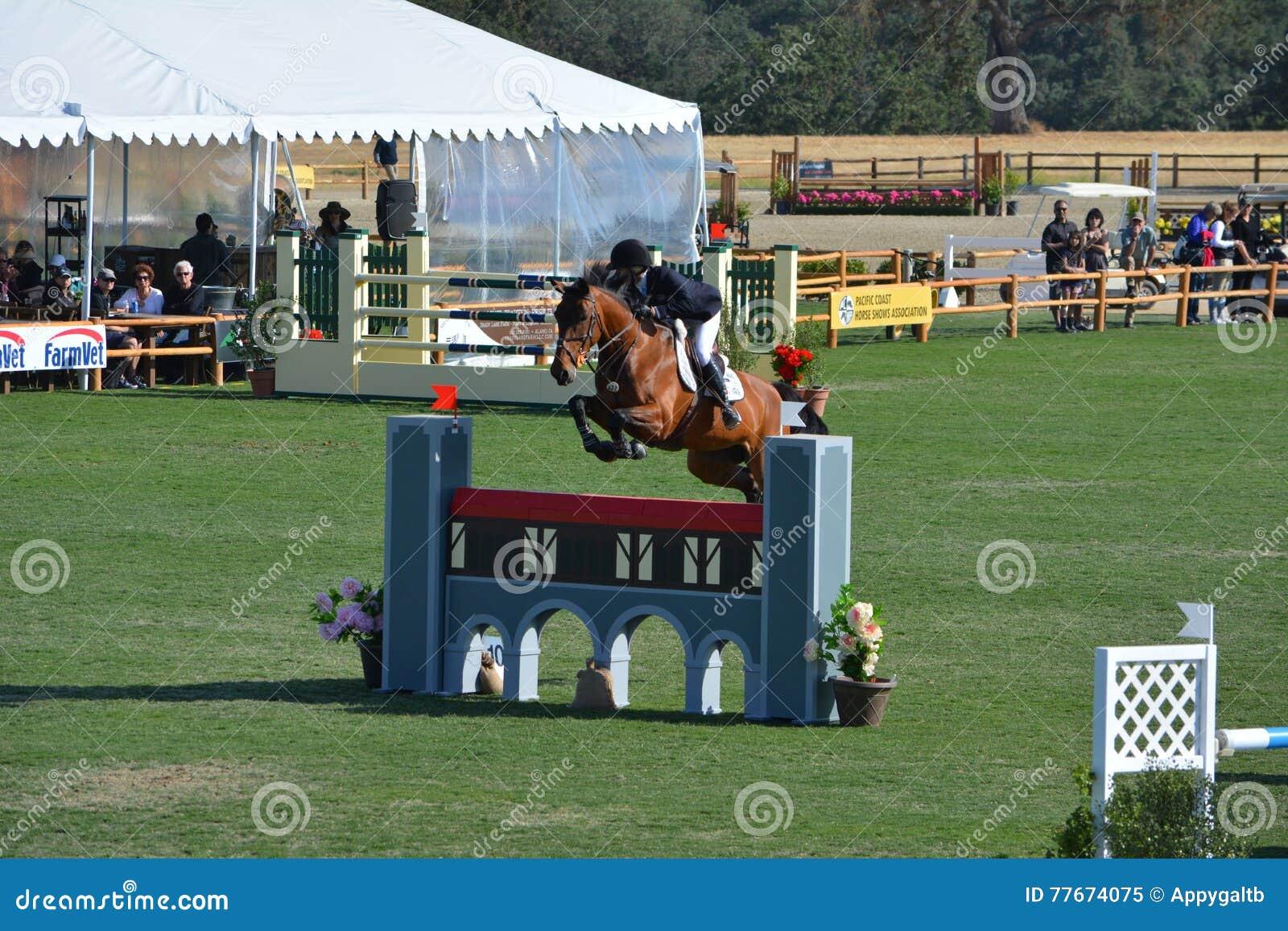 Парк лошади Paso Robles скача Grand Prix