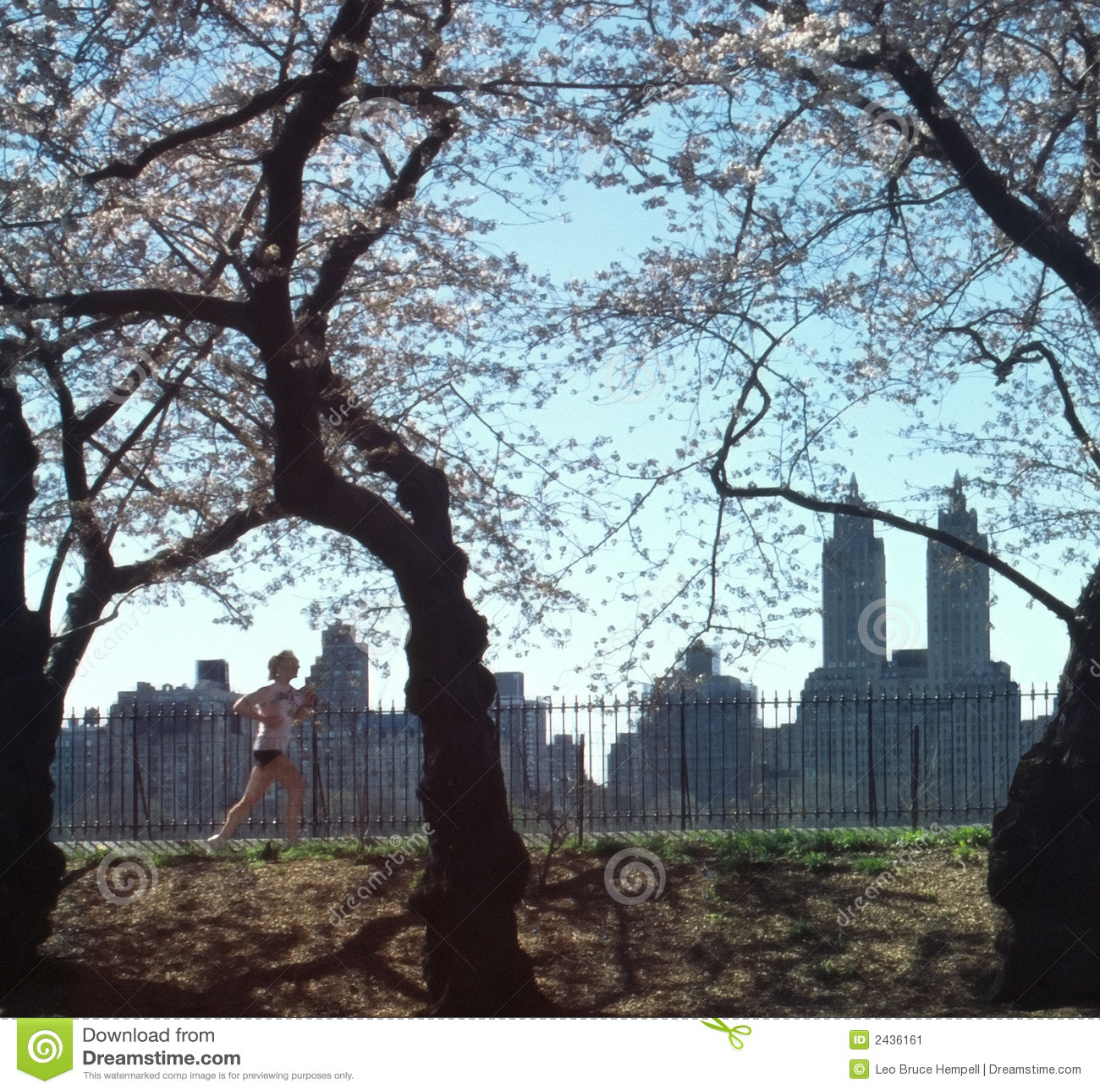 парк york jogger главного города новый