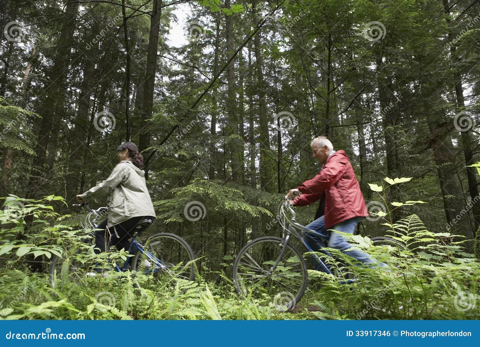 Пары постаретые серединой с велосипедами в лесе