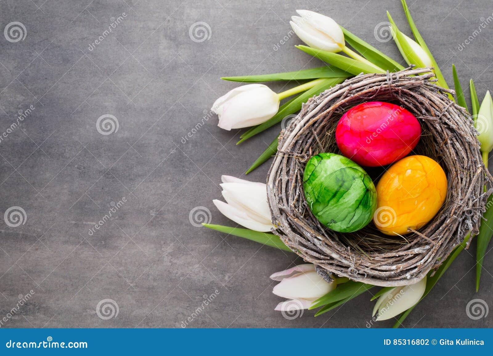Пасхальные яйца в тюльпане und гнезда Серая предпосылка