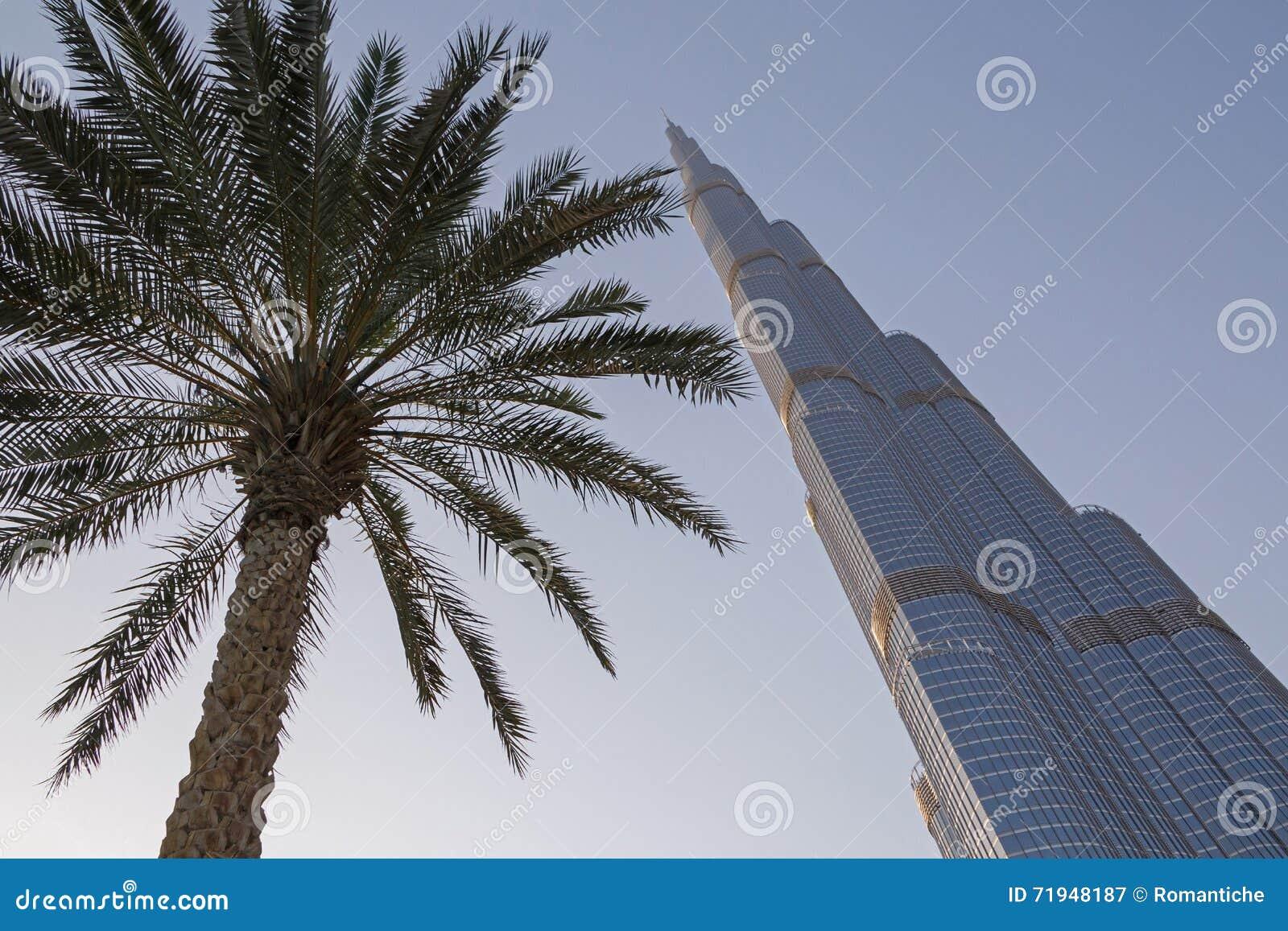 Пальма на небоскребе Burj Khalifa