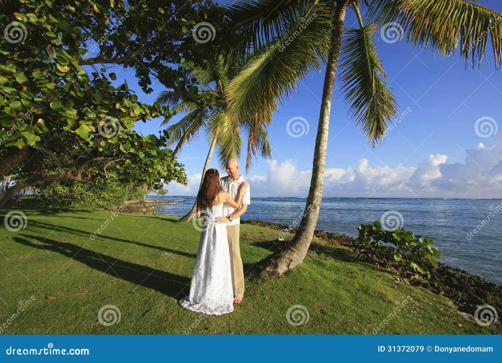 Пальма Groom и невесты готовя