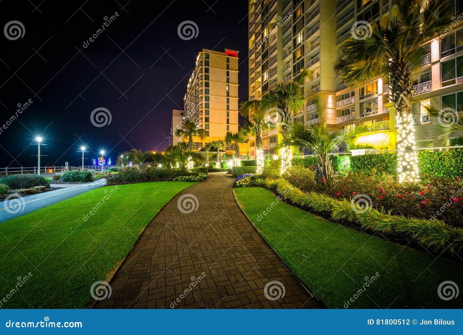 Пальмы и гостиницы highrise вдоль дорожки на ноче, в Virg