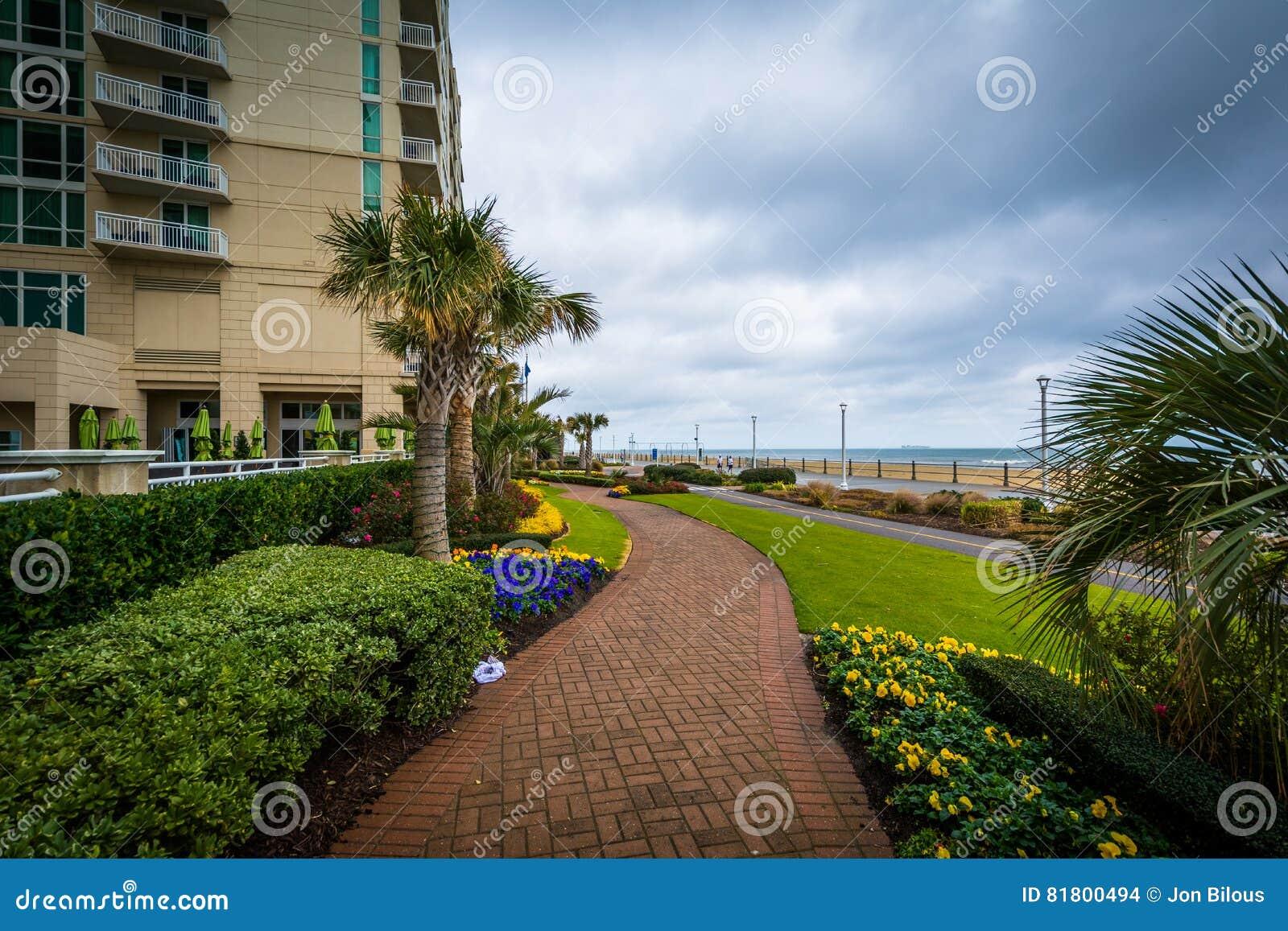 Пальмы и сады вдоль дорожки в Virginia Beach, девственнице