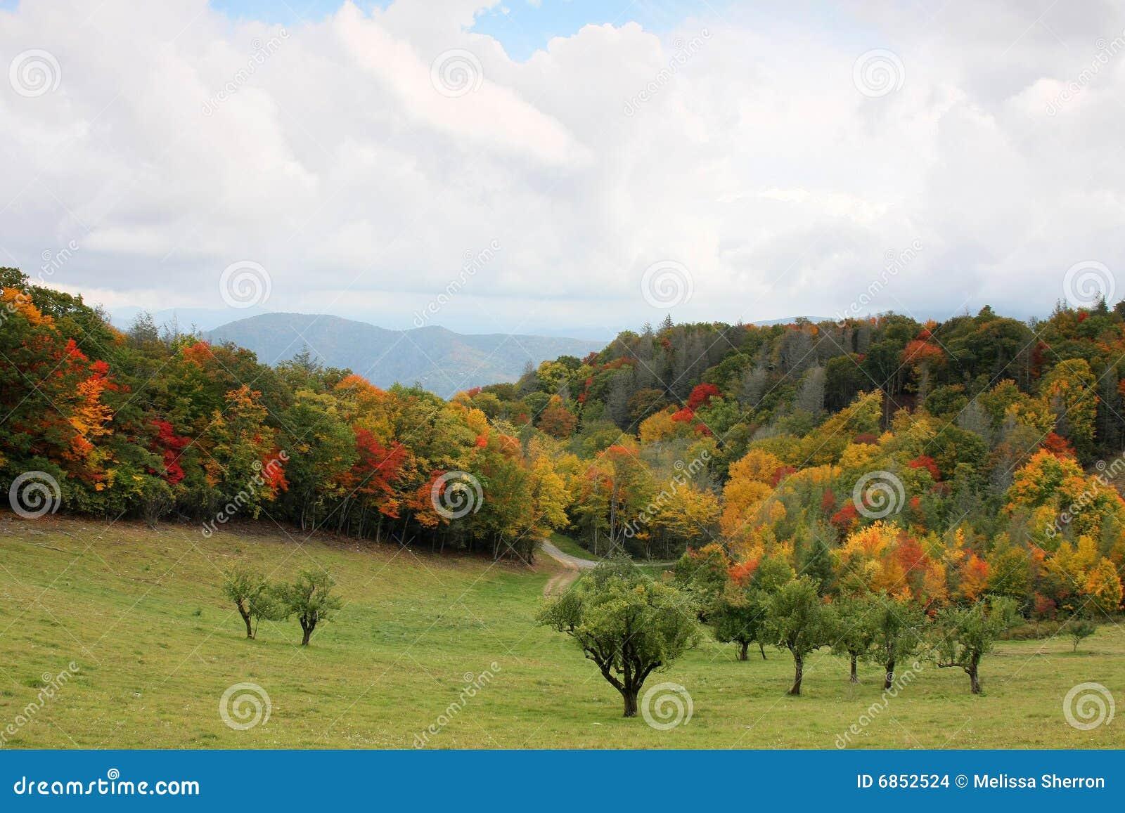 пейзаж горы закоптелый