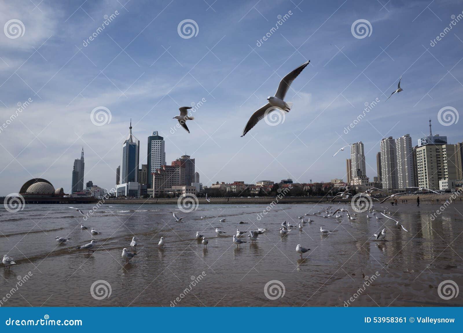 Пейзаж Qingdao