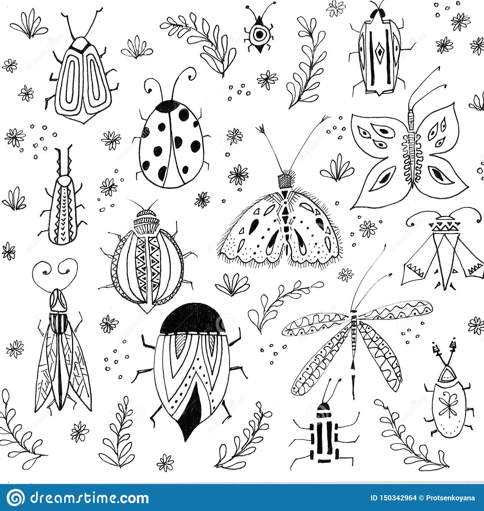 Первая предпосылка цветков весны Флористические элементы, чертежи насекомых Иллюстрации руки вычерченные ботанические Сад и