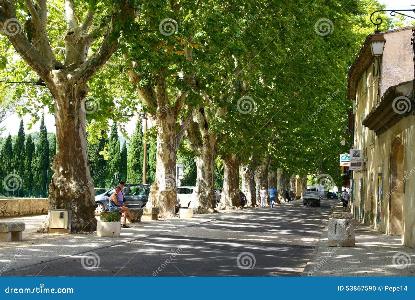 Переулок плоских деревьев в Любероне