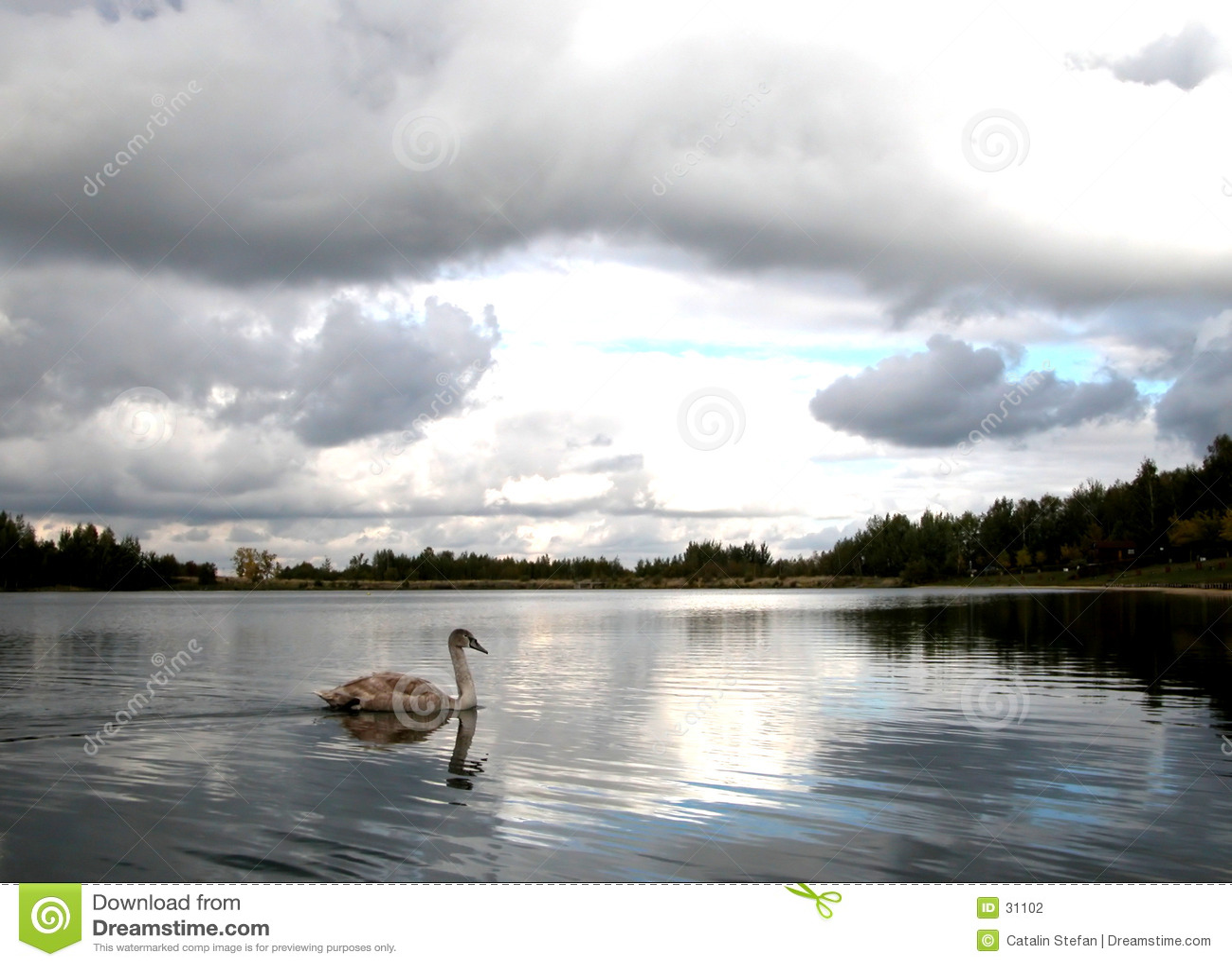 перспектива озера