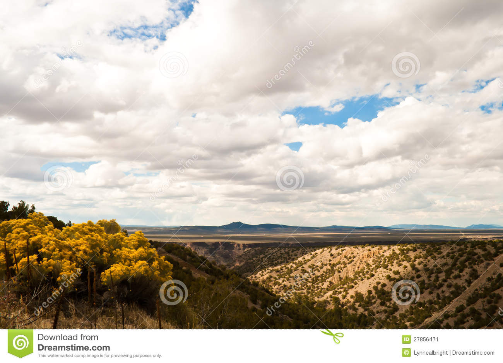 Перспектива пустыни