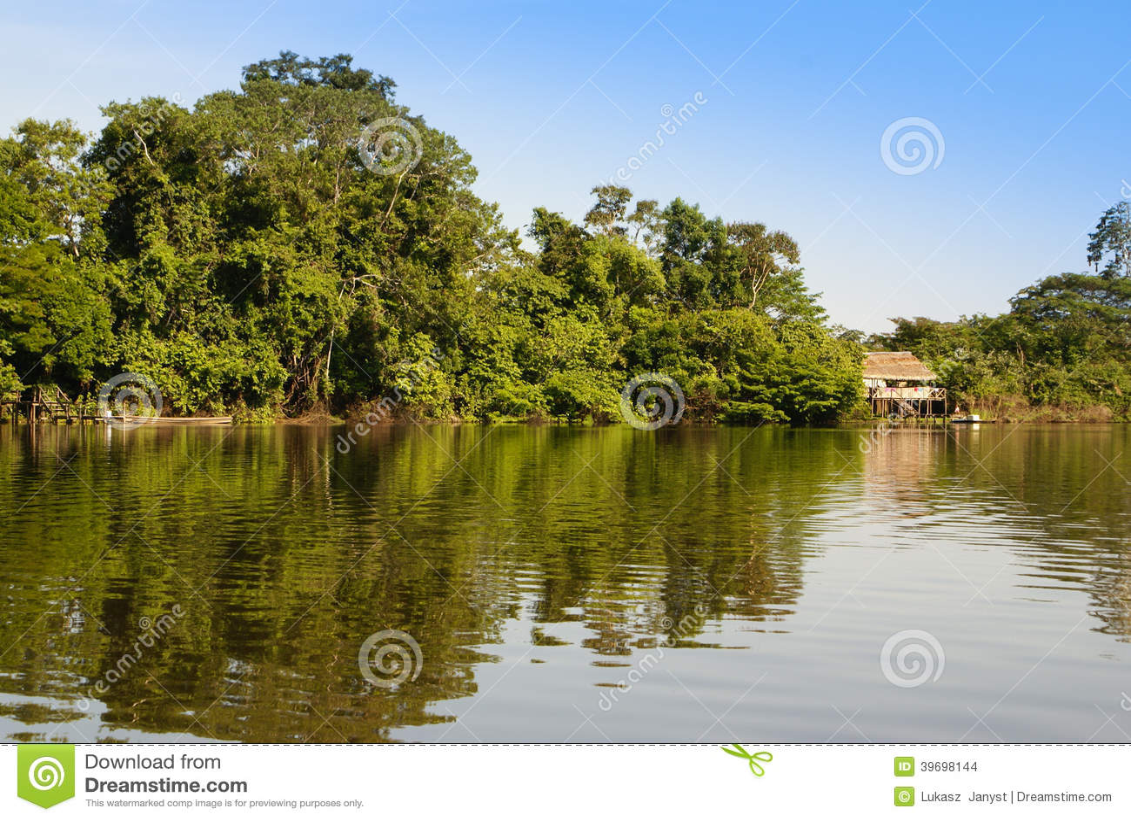 Перу, перуанский ландшафт Amazonas. Настоящий момент типичный ind фото