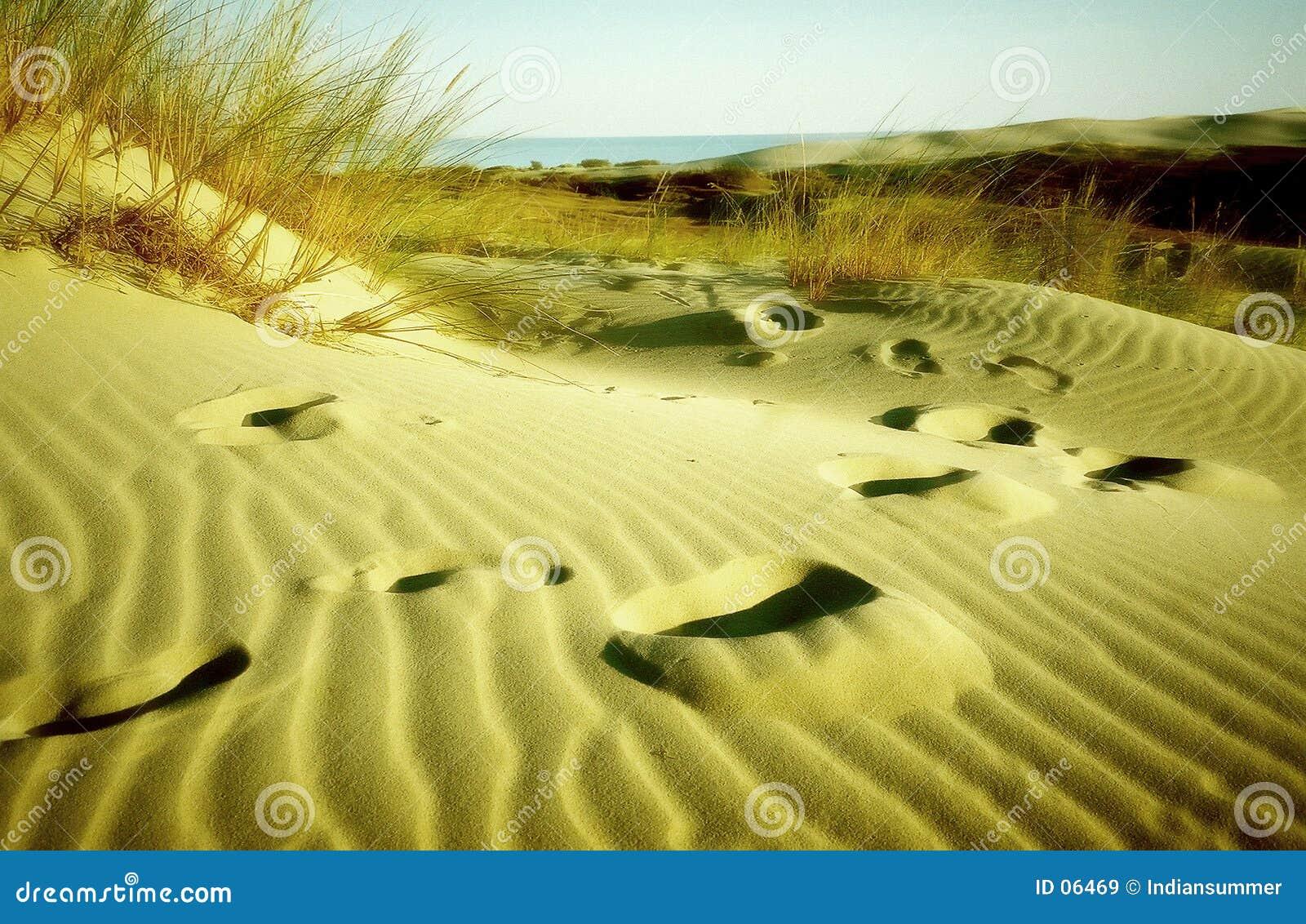 песок следов ноги
