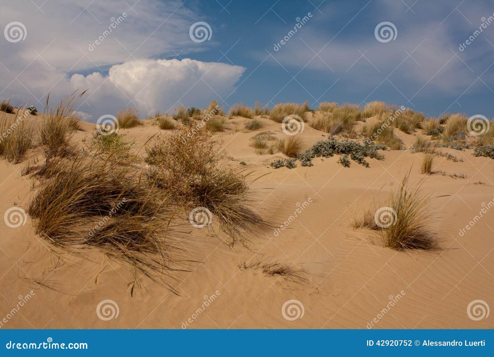 Песчанные дюны на пляже Sampieri