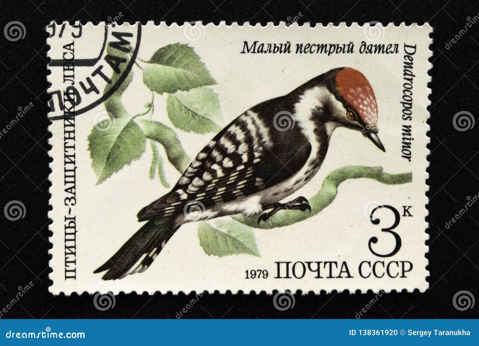 Печать почтового сбора СССР, серия - птицы - демонстранты леса, 1979