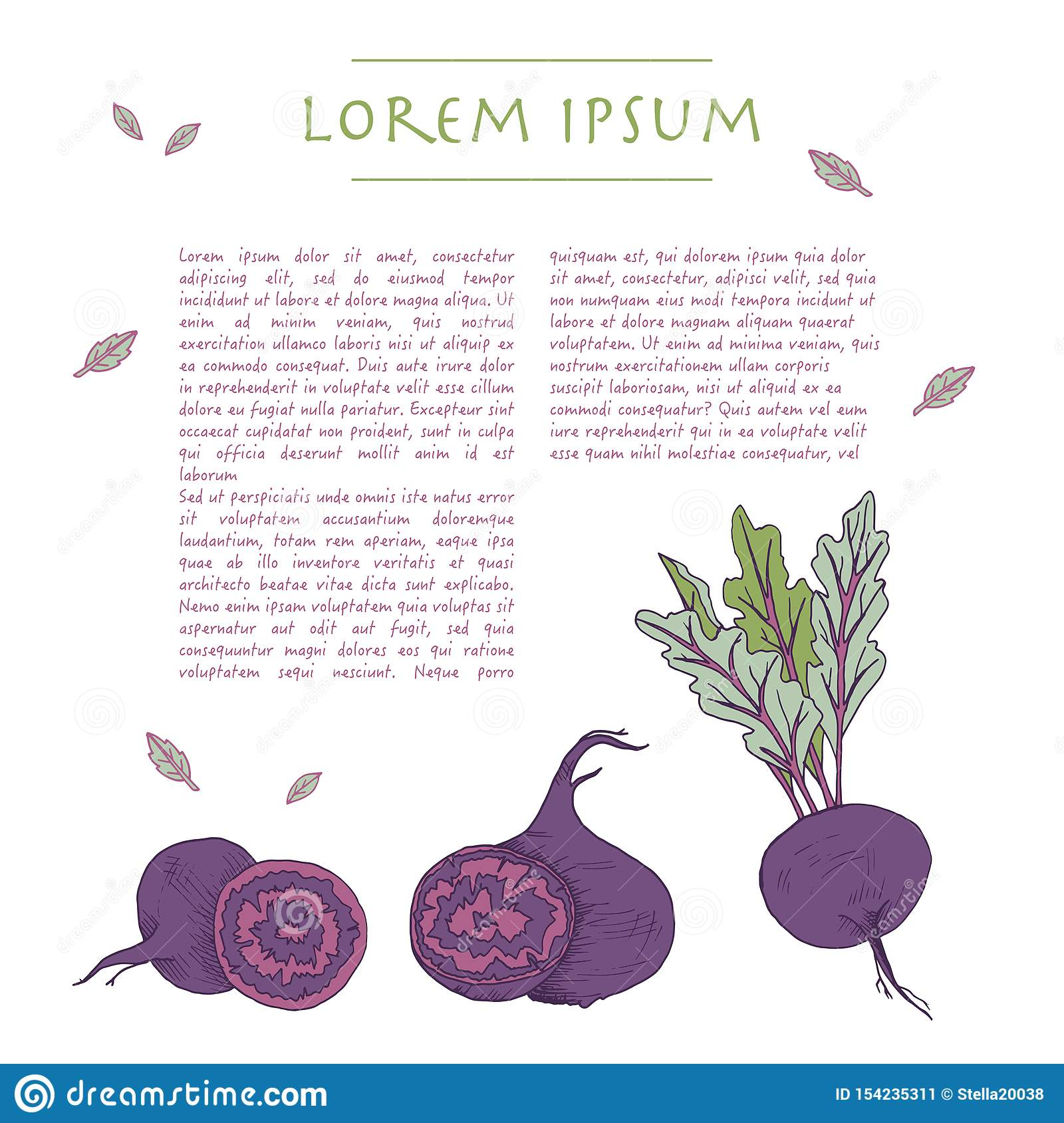 Food background with beet root vegetable Hand drawn white social media template