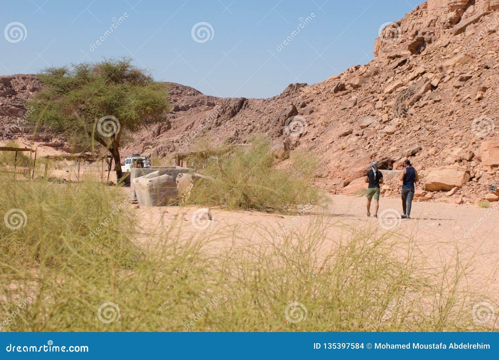 Пеший туризм в Dahab, каньон цвета, Египет