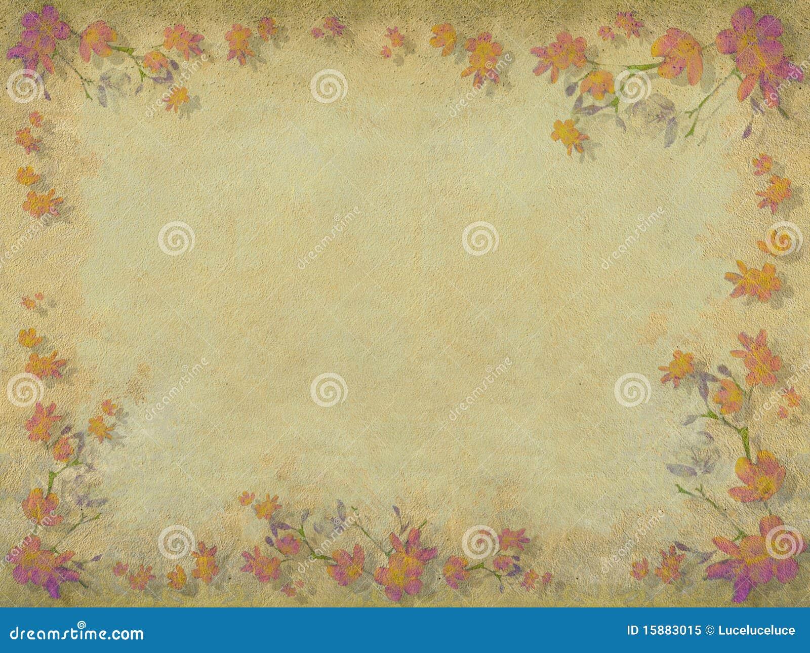 пинк цветка граници цветения предпосылки померанцовый