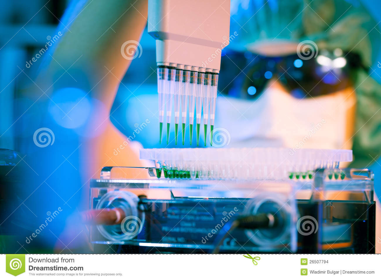 microbiology research paper on unknown bacteria