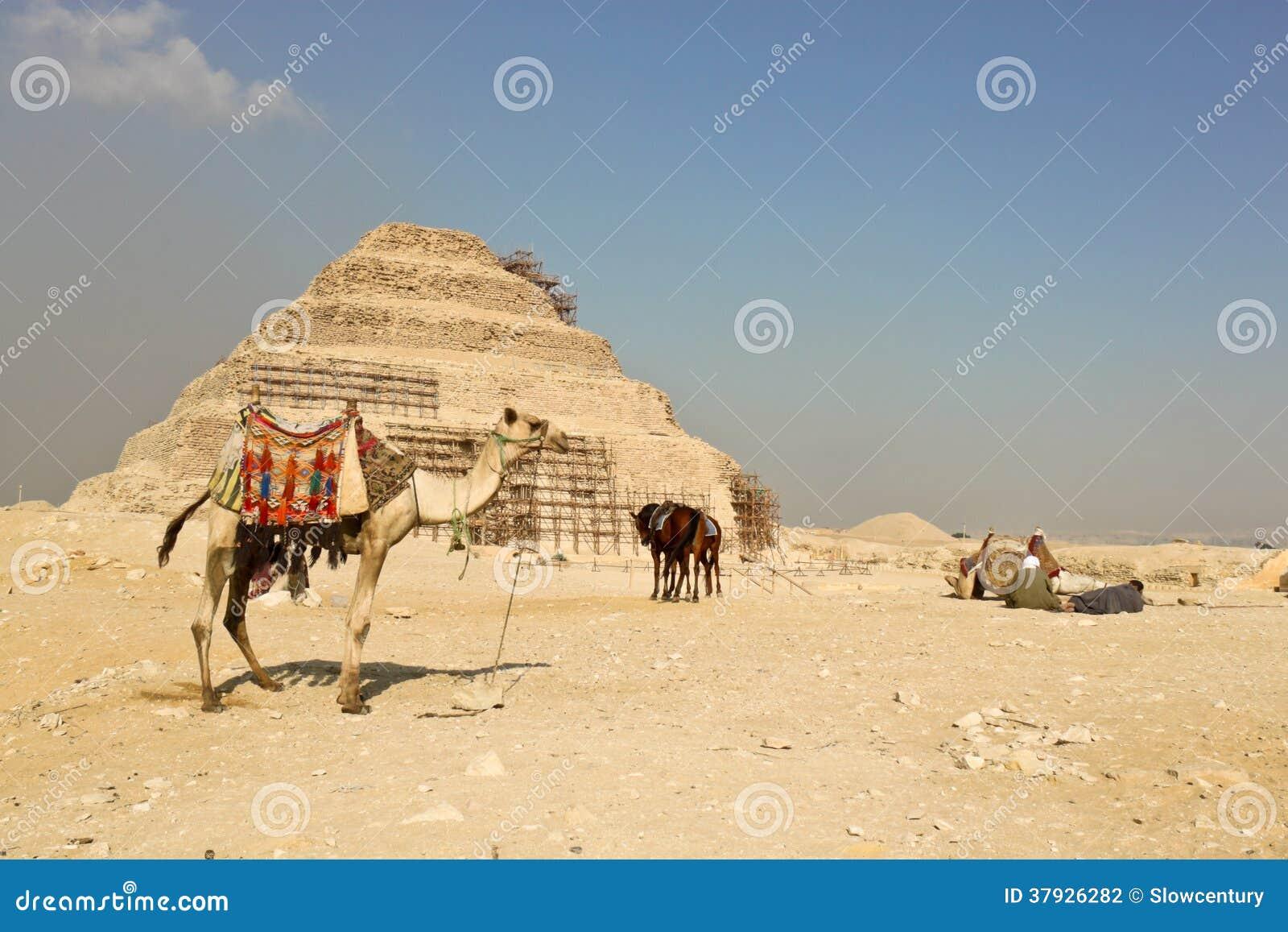 Пирамида шага Djoser в Саккаре, Египте