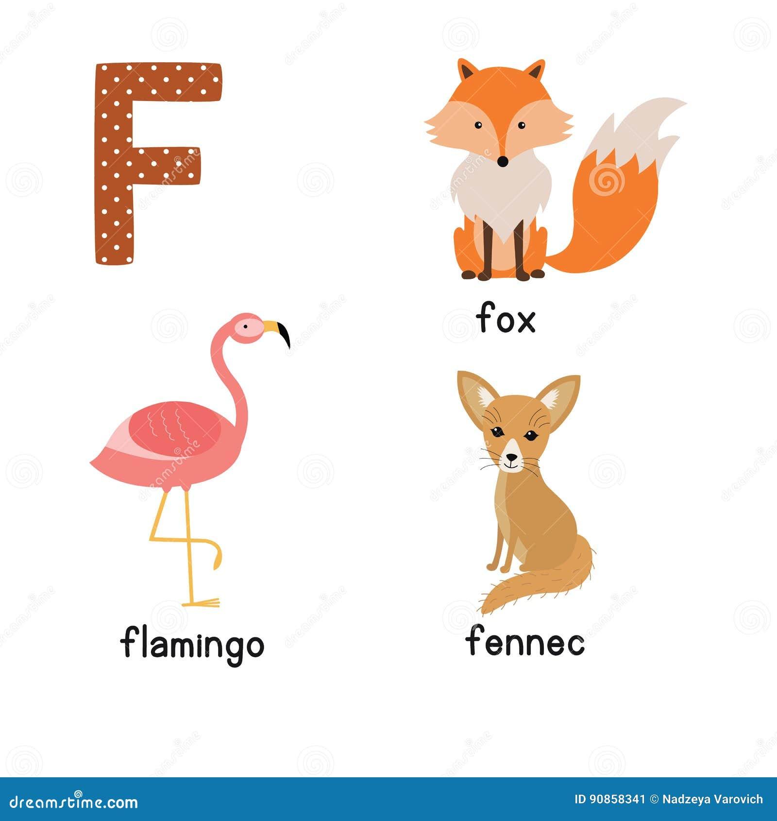 Письмо f Милые животные Fox Fennec фламинго Смешные животные шаржа в векторе Книга ABC