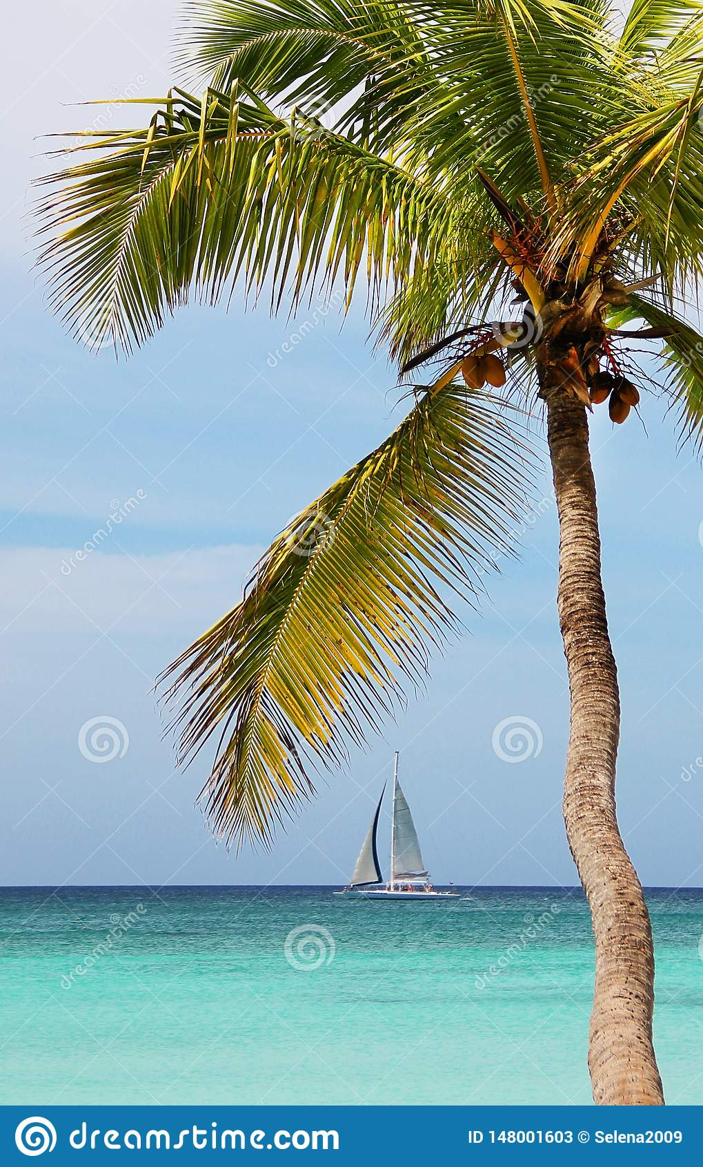 Плавание парусника на море Тропический океан
