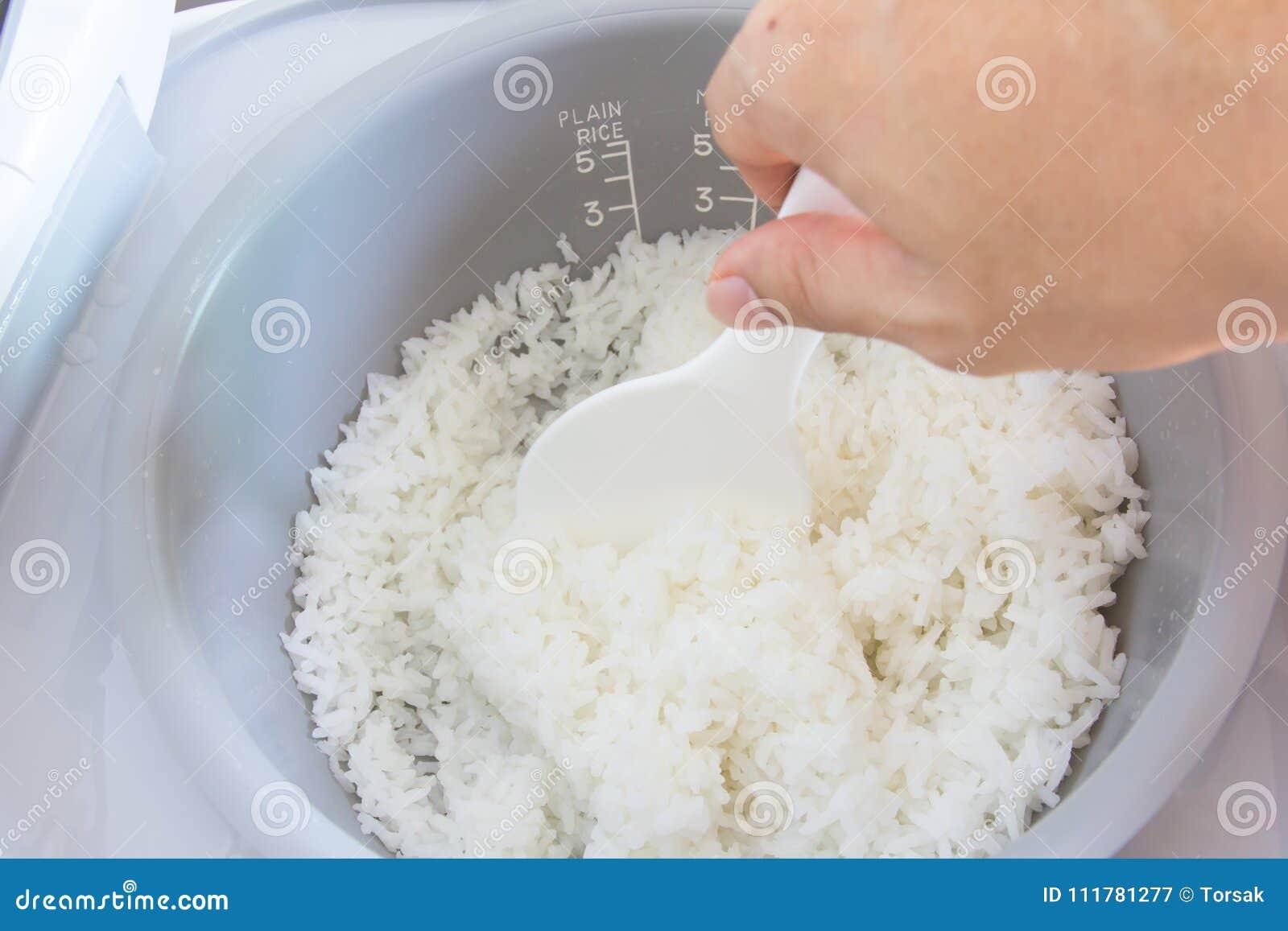 Плита риса