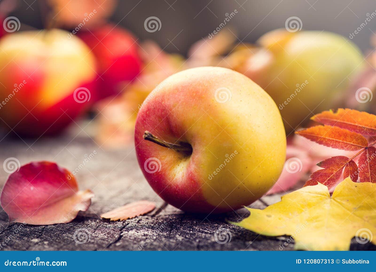 Плодоовощи осени и красочные листья над старой треснутой деревянной предпосылкой падение благодарение