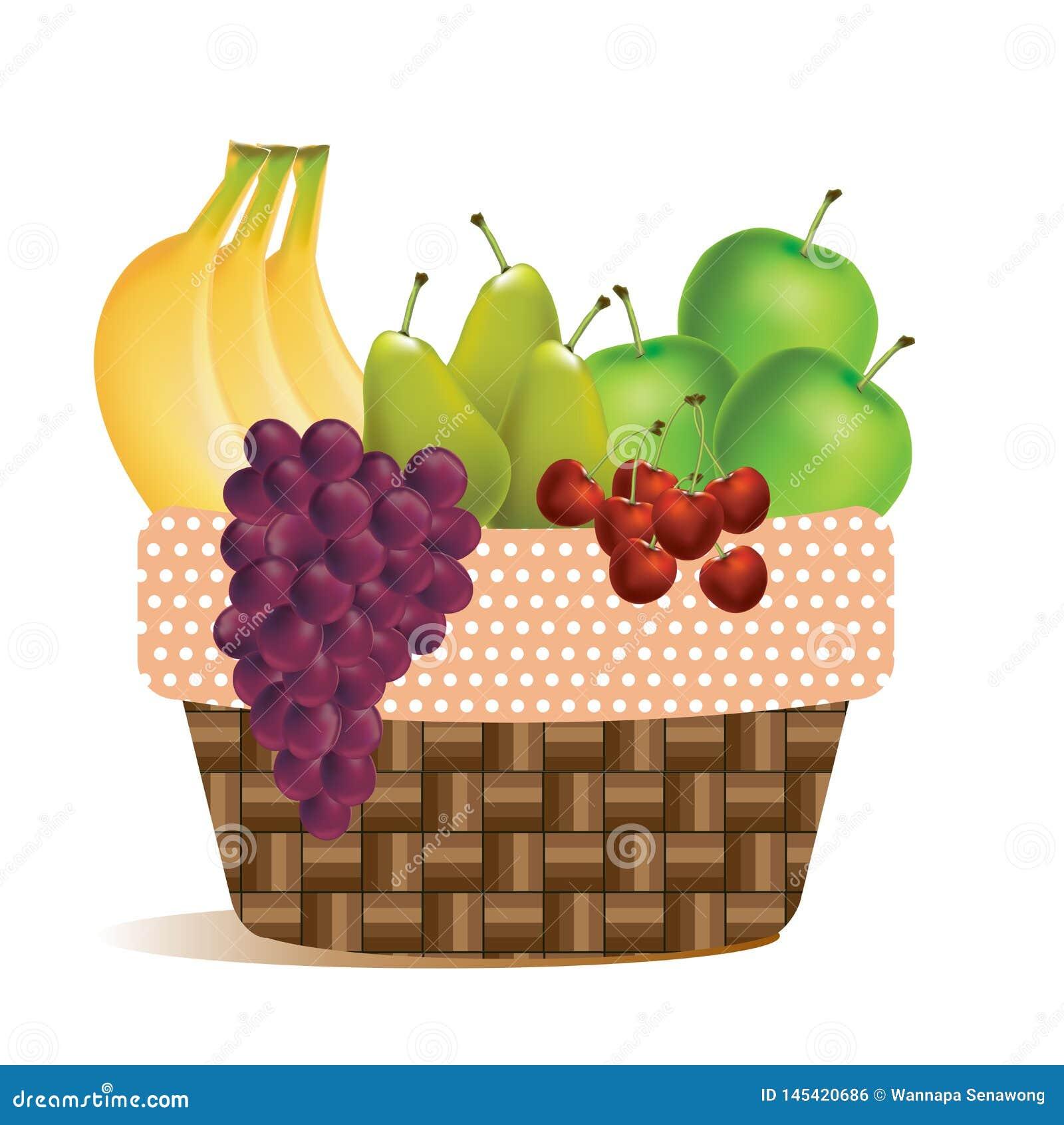 Плоды в корзин-пикнике сбора на открытом воздухе - значок вектора